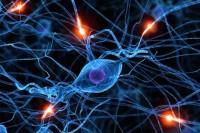 Конкурс научно-популярных статей «био/мол/текст». Основная тематика - молекулярная биология и биофизика, биомедицина и нанотехнологии, а также биоинформатика.