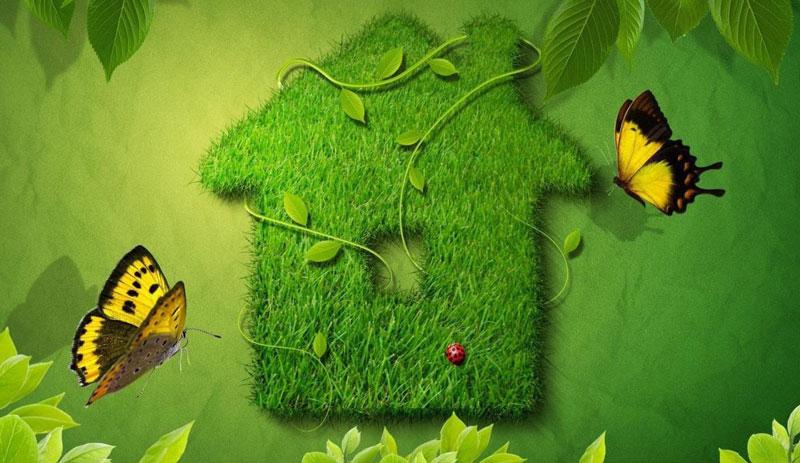 """В рамках проекта """"Школа за экологию: думать, исследовать, действовать!"""" Гете-Институт в России объявляет новый конкурс для школьников."""